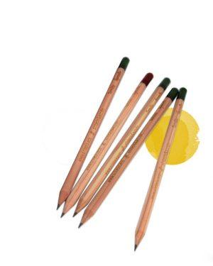 Lápices plantables